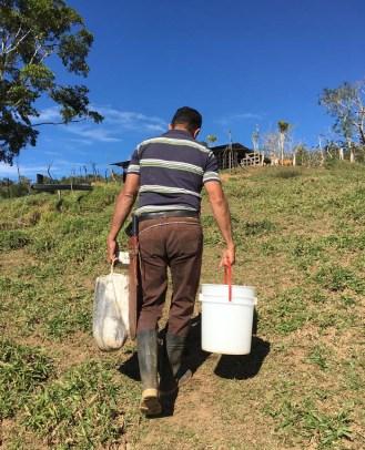 Olivio hauling milk